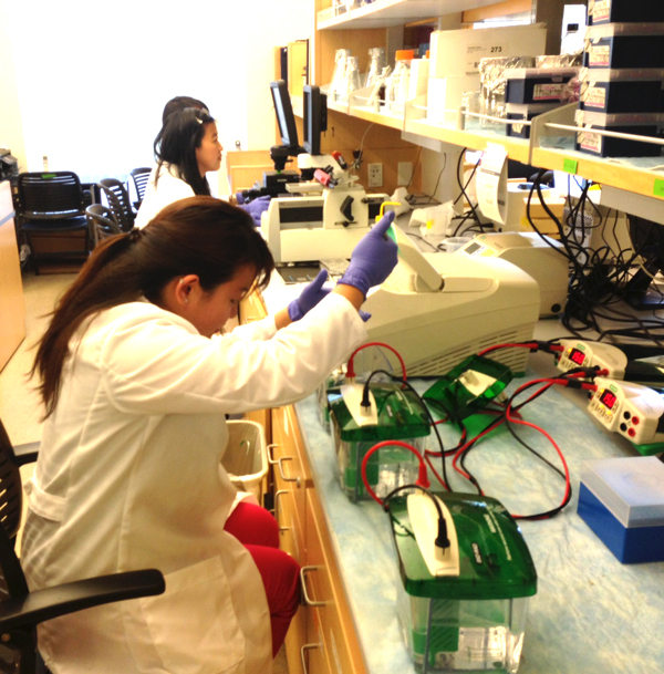 UC Merced students working in lab